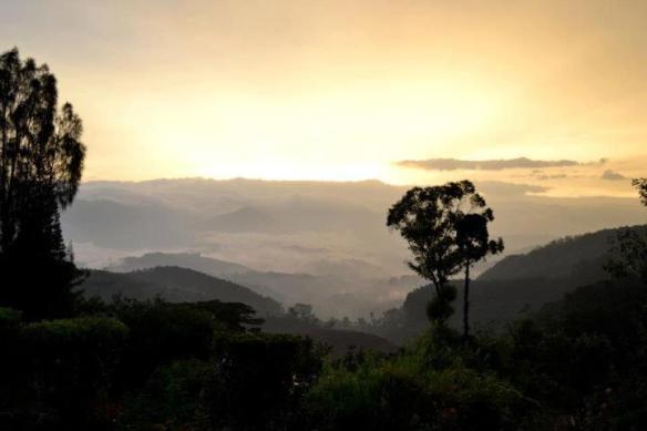 The Hills & Tea Plantations near Haputale, em11